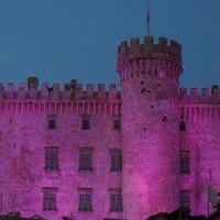 castello in rosa