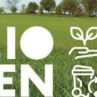 Lazio Green copy